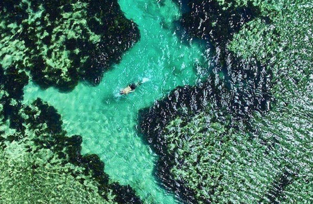 Fiji Snorkelling Reef