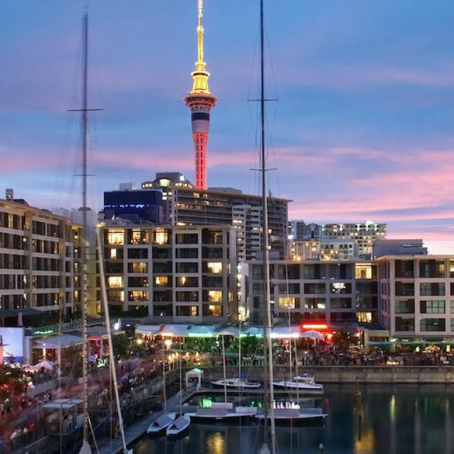 Auckland Night