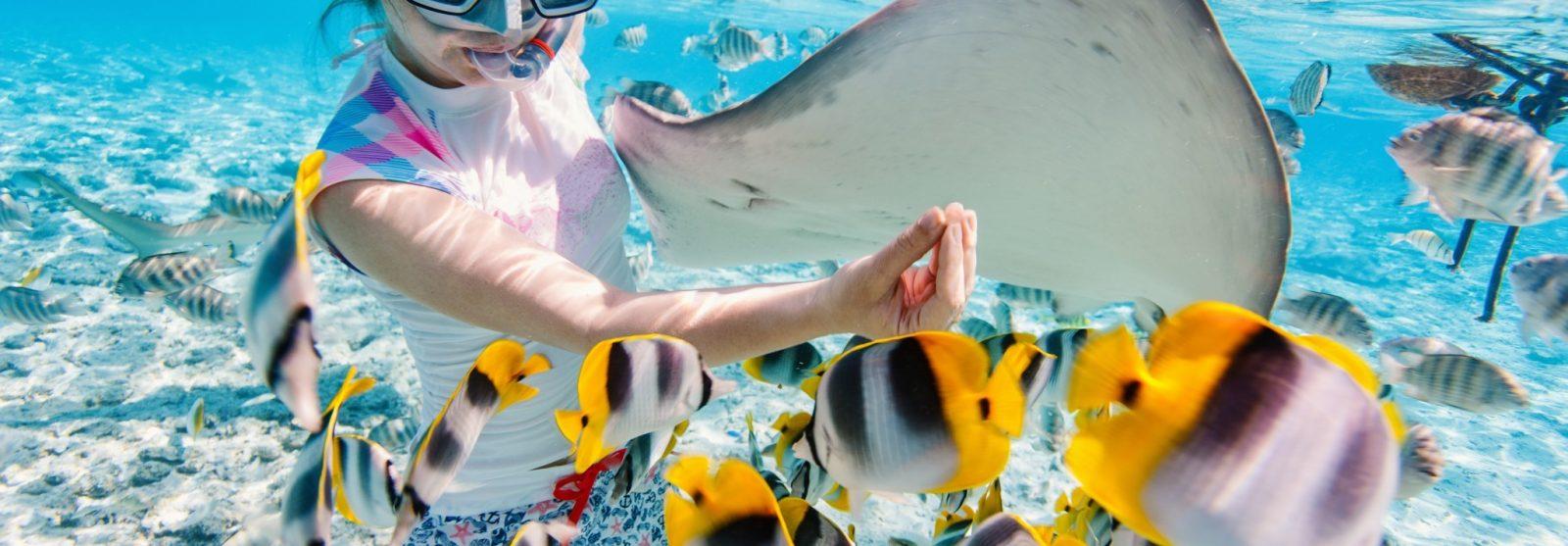 Tahiti Underwater Swimmer