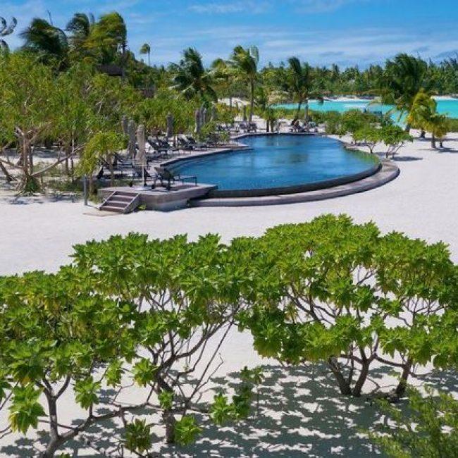 The Brando Swimming Pool