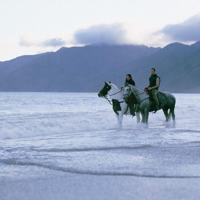 Wharekauhau Horse Riding