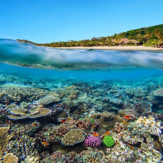 Kadavu Islands Destination