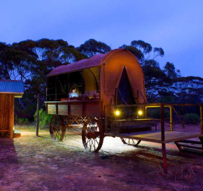 Kangaluna Camp – 'Swagon'