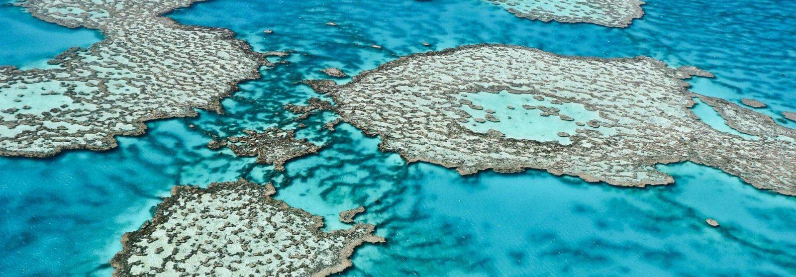 liveaboard-australia-great-barrier-reef-xxl